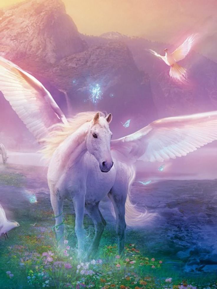 Find This Pin And More On Mystical Magical Unicorns And