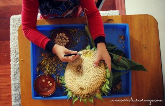 Early Childhood Fine Motor Activity with Sunflowers from Carrots Are Orange