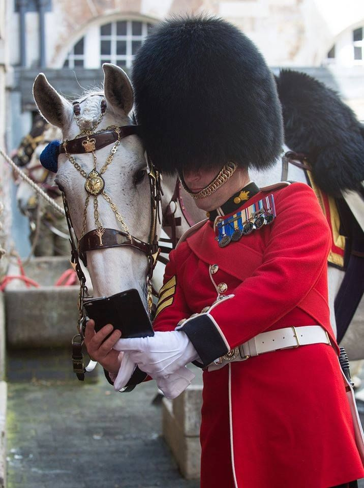 A ceremonial horse and a Grenadier Guard take a pre-parade selfie in the stables before the Colonel's Review.