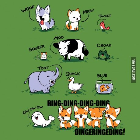 What does the fox say!?