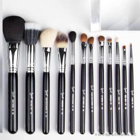 sigma makeup brushes. the set i want is - bunny's favorite 4 set $78 on sale for $66