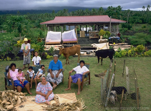Material World: A global Family Portrait by Peter Menzel and Faith D'Aluisio. the Western Samoa family