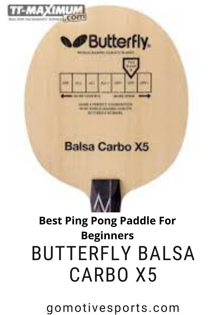 Best Ping Pong Paddle For Beginners In 2020 With Images Ping Pong Paddles Ping Pong Best