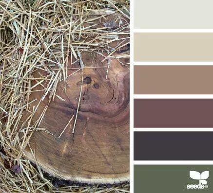 1000 ideas about rustic color palettes on pinterest - Exterior house color scheme generator ...