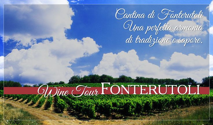 A perfect harmony between tradition and flavor. For reservations for large groups contact our Enoteca at enoteca@fonterutoli.it @marchesimazzei #winetour #MarchesiMazzei #Fonteurutoli