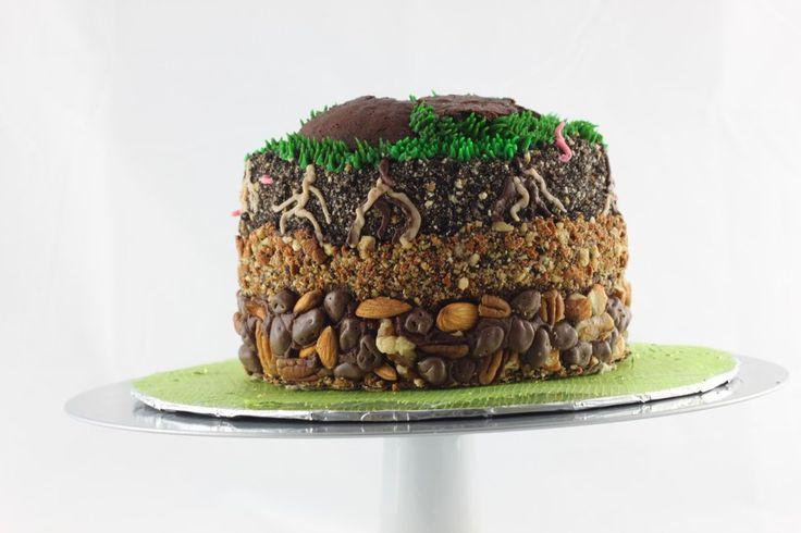 geology cake | geology cake! | Let Them Eat Cake