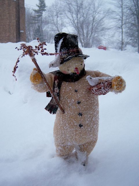 snow man with white doves