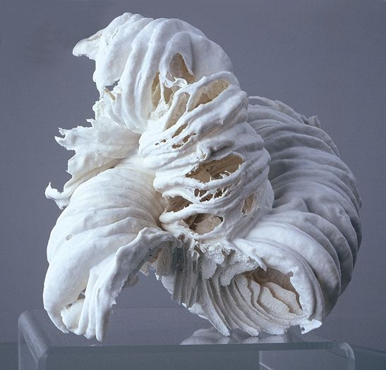 I love the way this looks like a wave   cotton cosmetic pads dipped in porcelain slip and fired  Jessica Drenk