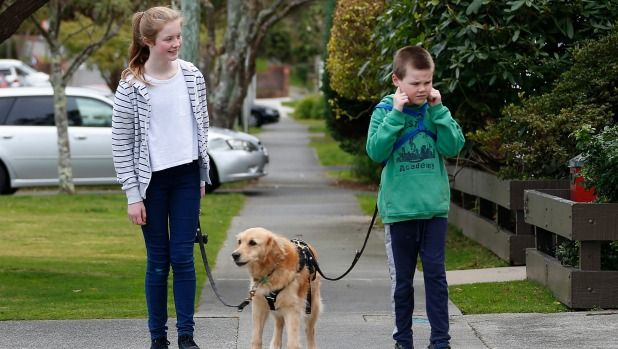 Bessie the dog makes life easier for autistic child Henry and his family...