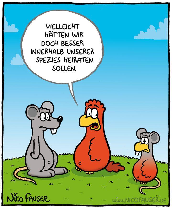 sonner deutsch