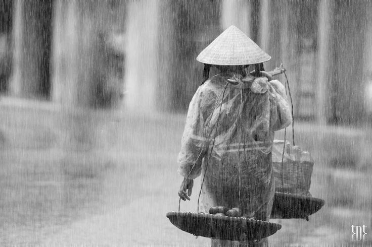 Trong cơn mưa chiều