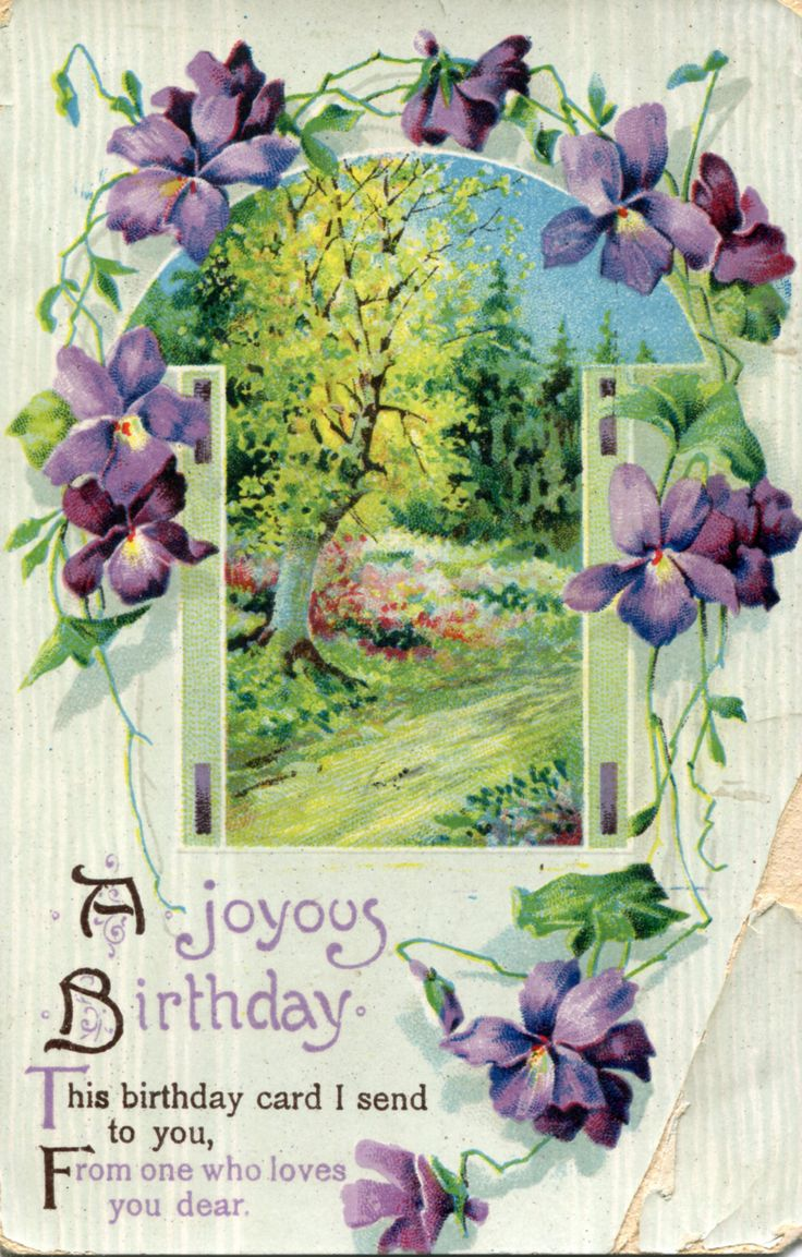 1293 Best Birthday Cards Images On Pinterest Birthday Greetings