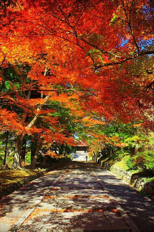 Approach to Bishamondo temple, Kyoto, Japan