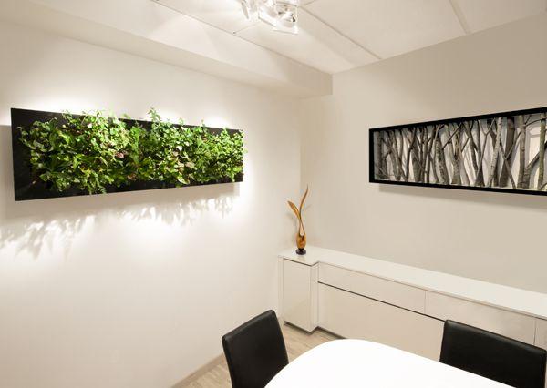 Artscreen - Tropisk Design Green wall, plant, plants, living wall, grønn vegg, levende vegg