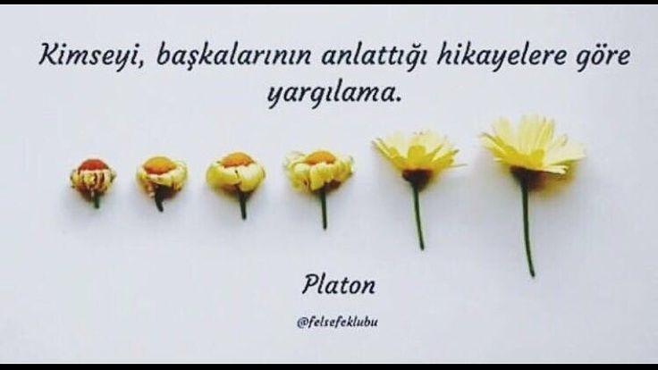 * PLATON öğrenemediler.