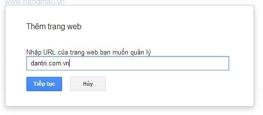 nhập tên trang web vào ô thêm trang web trong google webmaster tool