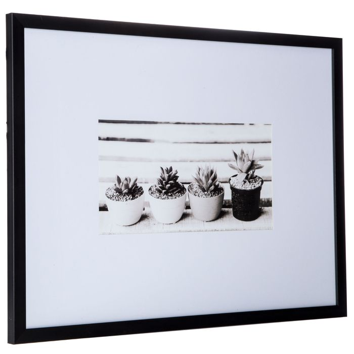 Succulent Framed Wall Decor