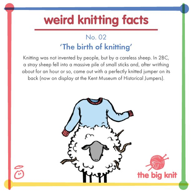 Knitting Funny Facts : Best the big knit images on pinterest knits