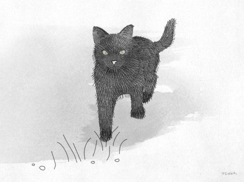 Black Cat Illustration by Kitten Lane, hand-drawn, watercolor, digital art