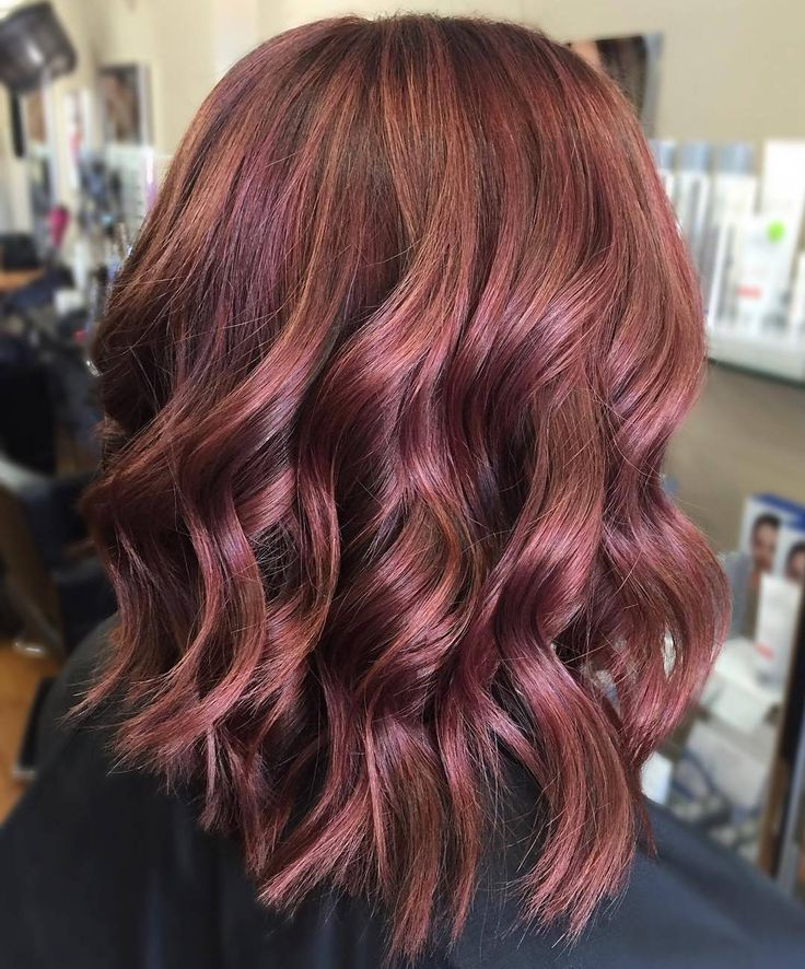 Soft mulberry tones via @hair.by.tenelle. #hair #hairinspo #haircare…