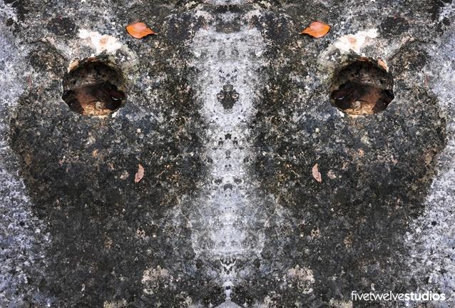 Avatar - www.facebook.com/512studios #nature #faces #symmetry