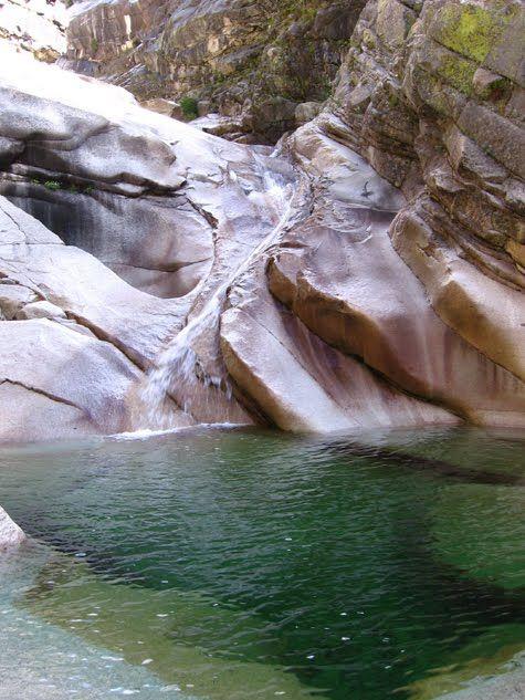Dog/Spring Creek (South Yuba River)