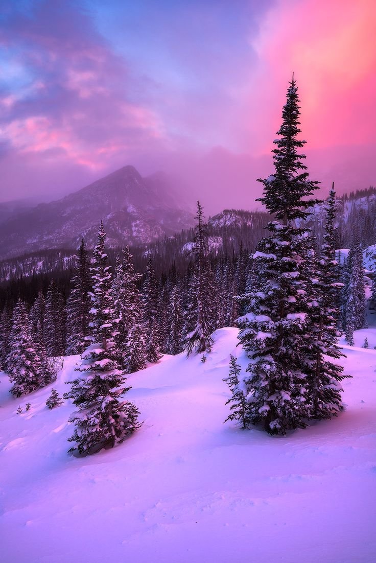 Rocky Mountain National Park in Colorado. Photo by Erik Page.