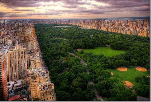 Awesome view of Central ParkBuckets Lists, Centralpark, Favorite Places, New York Cities, Beautiful Places, Central Parks, Parks Nyc, New York City, Newyork