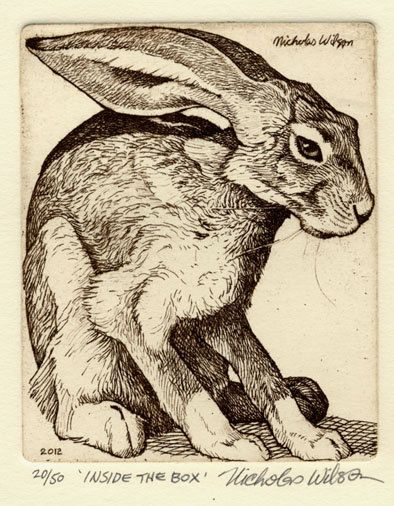 "Nicholas Wilson etching of Jackrabbit ""INSIDE THE BOX""....its funny how many rabbit etchings are out there..."