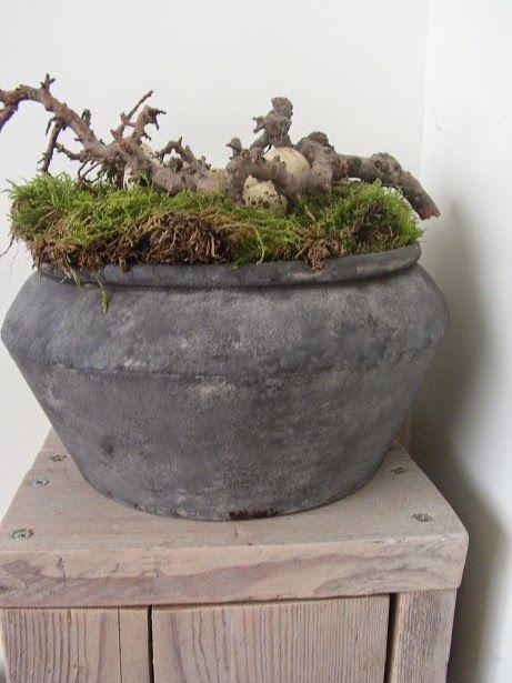 Voorjaarsstuk in robuuste pot