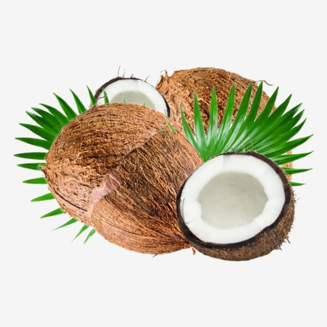 Half And Fully Husked Coconut With Leaves Fresh Coco Shell Png Transparent Clipart Image And Psd File For Free Download In 2021 Coconut Tree Collage Coconut Leaves