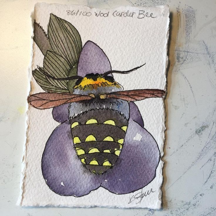 86/100 #100Bs wool carder Bee 🐝 #the100dayproject #artistkathysturr #thevioletfernartstudioandgarden #watercolorpainting #cultivatingart