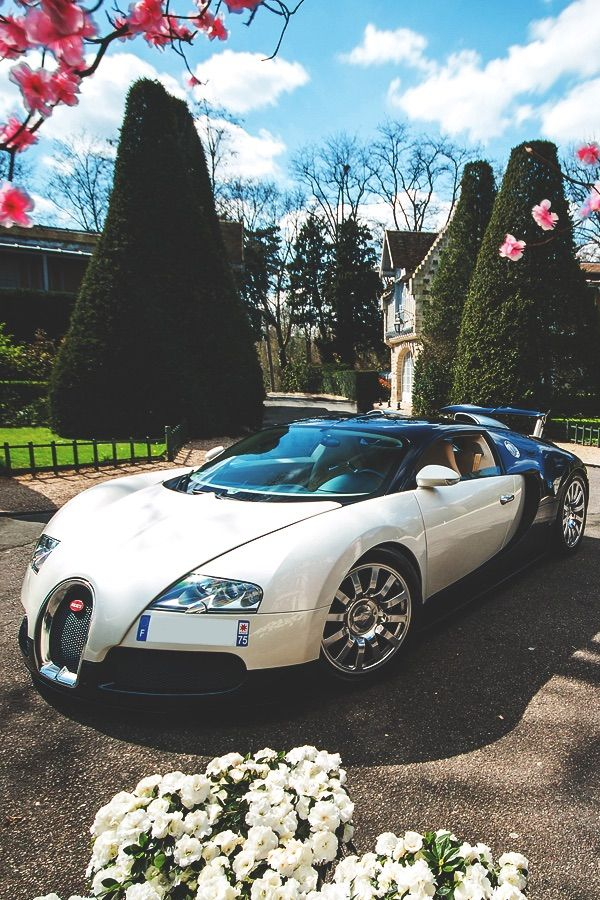 Bugatti Veyron....a girl can dream big 😉