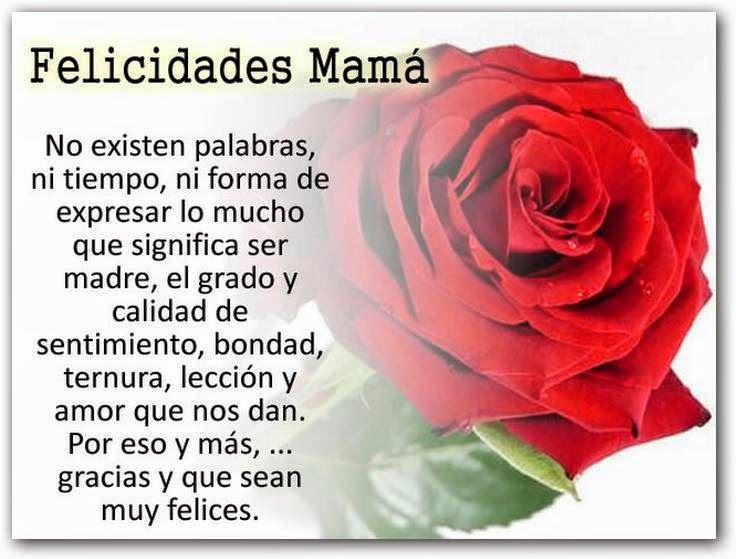 Frases Para Mama: 51 Best Images About Frases Del Principito On Pinterest