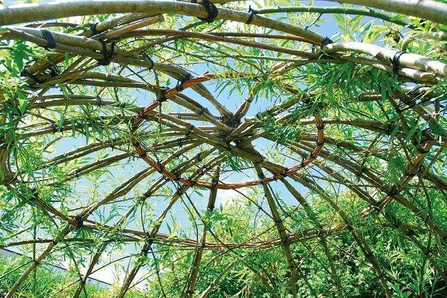 5-cupola unui foisor natural rustic din crengute de salcie