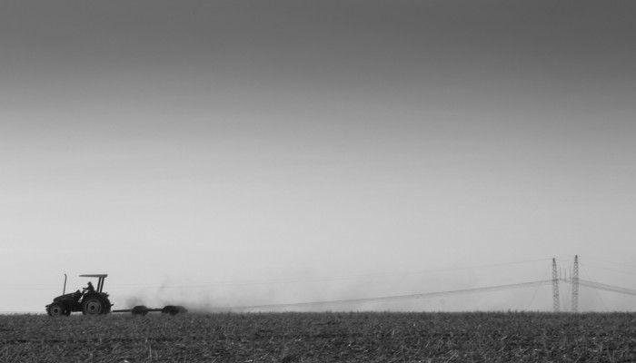 Humberto Lemos da série Capão Seco | 2012 18 x 55 cm Tiragem: 15