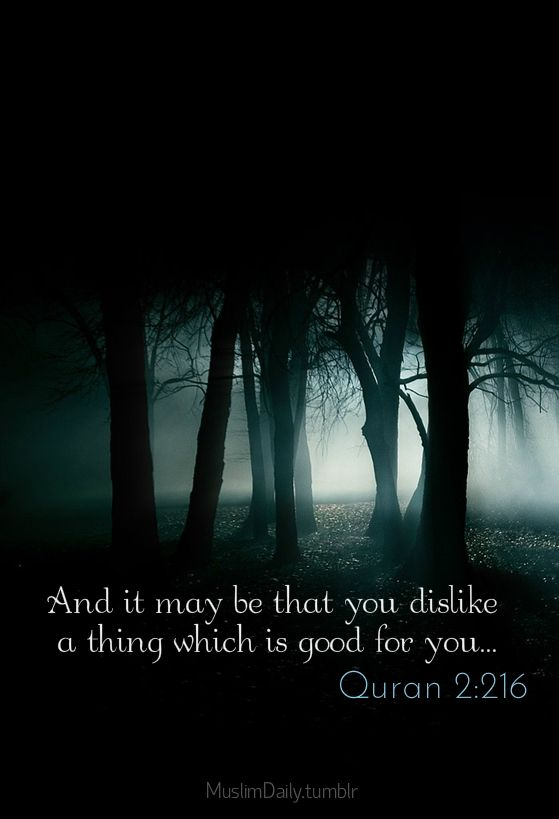 But perhaps you hate a thing and it is good for you; and perhaps you love a thing and it is bad for you. And Allah Knows, while you know not.