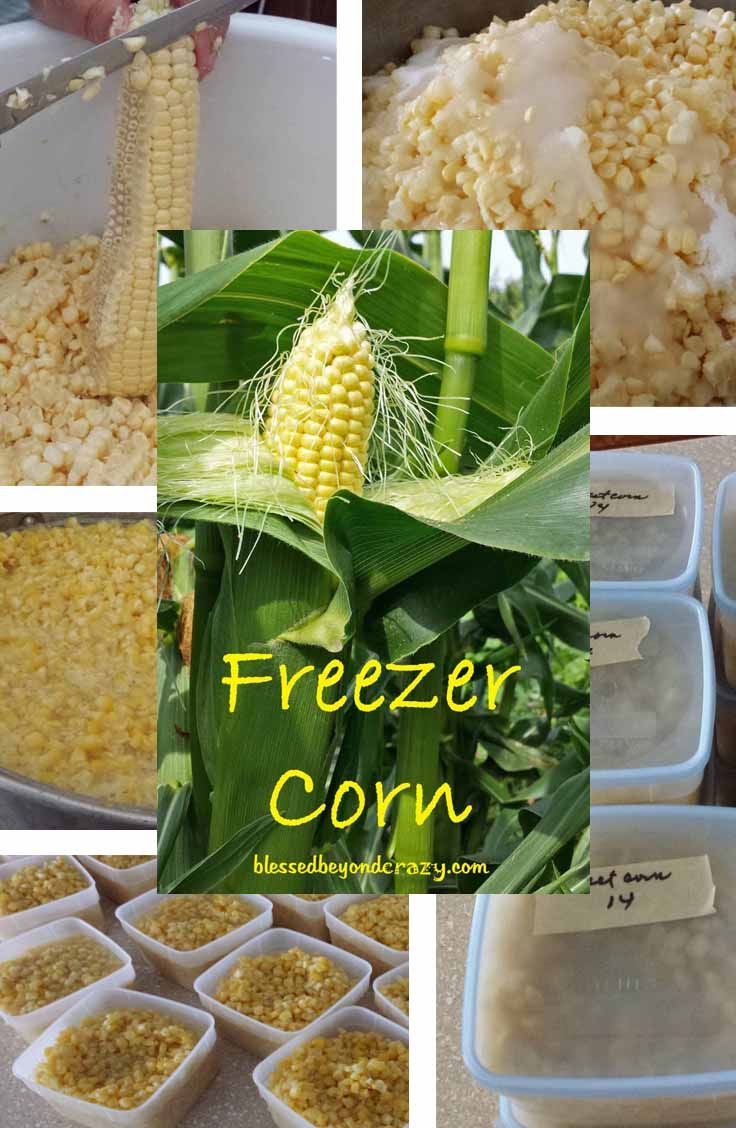 Home to make FREEZER CORN - taste just like corn off the cob - even in the cold winter months!