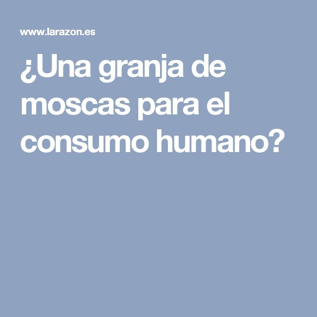 ¿Una granja de moscas para el consumo humano?