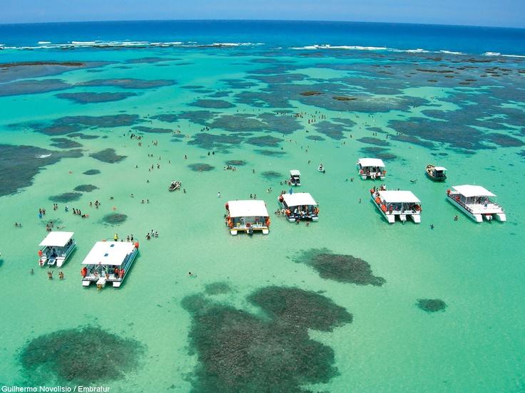 Maragogi possui 22km de praias com águas cristalinas, rasas e área com muito verde, ideal para a prática de esportes radicais, como o passeio de ultraleve.