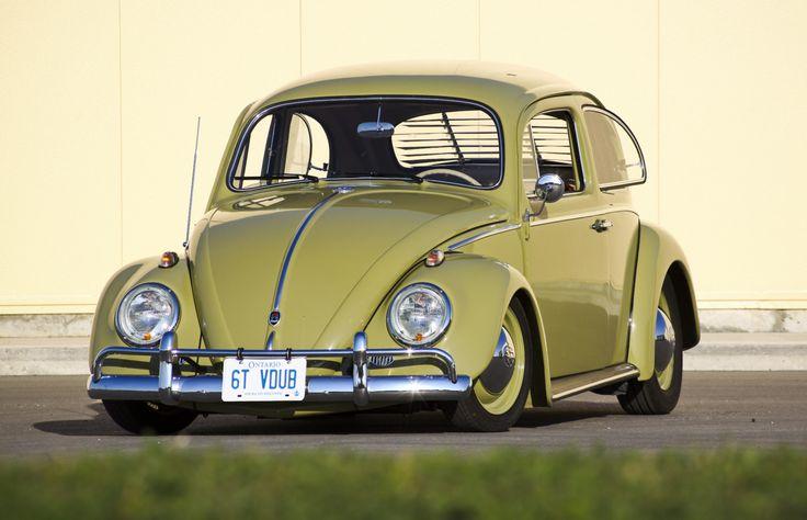Love the bug.