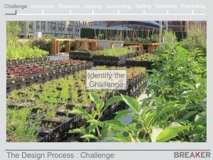 Design Within Limits: The Urban Agriculture Project