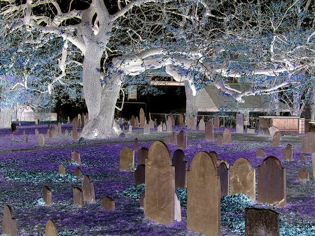 17 Best Images About Salem On Pinterest Arch House Rob Zombie And Street