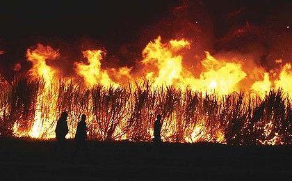 Burn-off time on a north Queensland sugar cane farm.