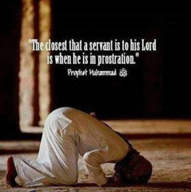 It is best for a muslim to pray, to sujood and remember Allah always. It is important to read Quran everyday.