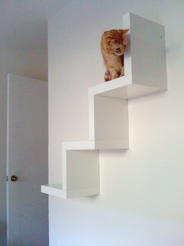 cat wall stairs ikea lack hack cats pinterest. Black Bedroom Furniture Sets. Home Design Ideas