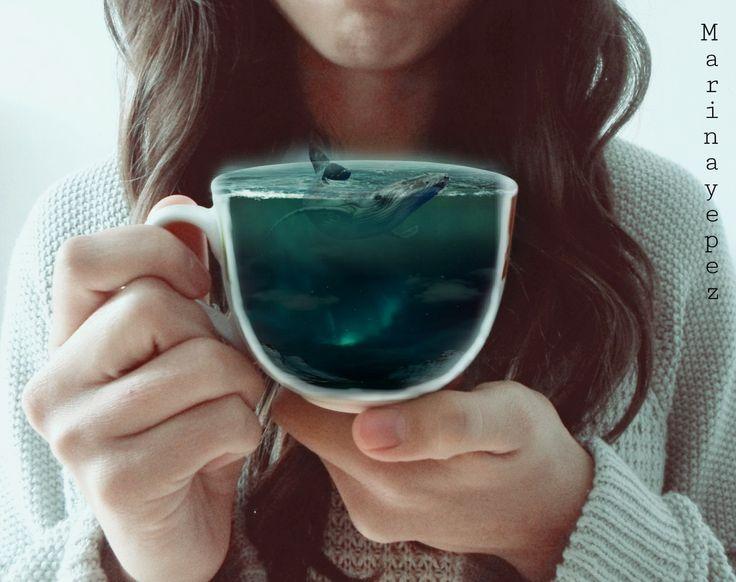 tea? if half cup , Please☕ Te? Si, media taza, porfavor  #cup #whale #night #ocean