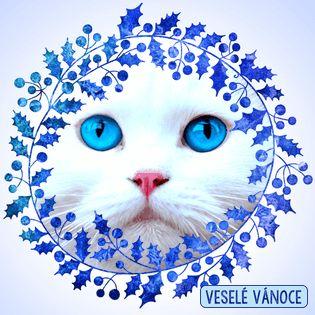Modrý cesmínový věnec