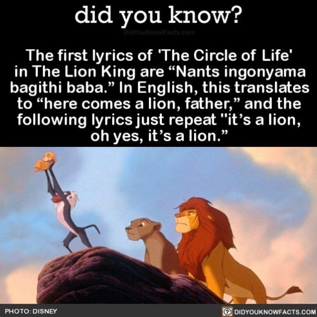 LION KING - Circle Of Life Lyrics | MetroLyrics