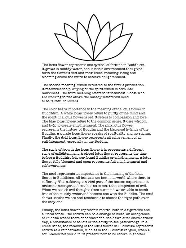 Meanings behind the lotus flower